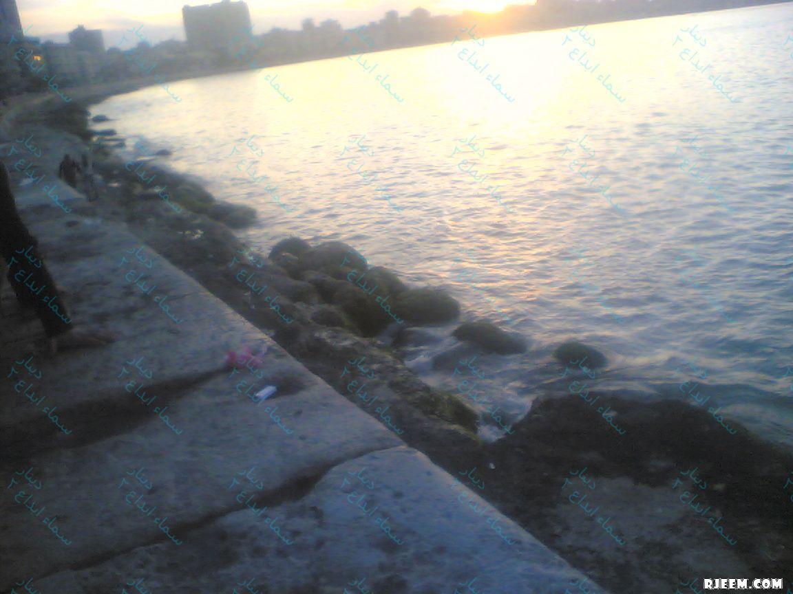 اسكندرية 13332177591.jpg