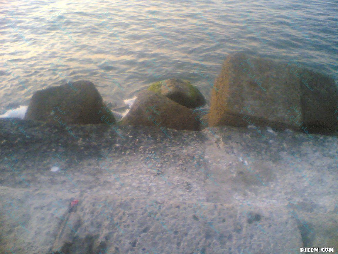 اسكندرية 13332177592.jpg