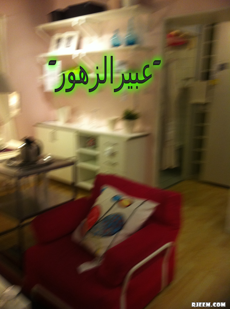 2013 13376147515.png
