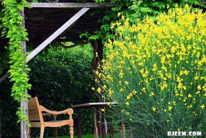 فيكاريلو Castello Vicarello 13396119974.jpg