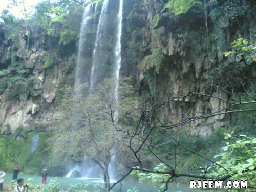 فيديو و صور للطبيعة في الباحة 13396312562.jpg