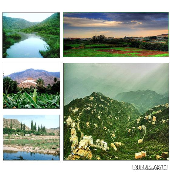 فيديو و صور للطبيعة في الباحة 13396318121.jpg