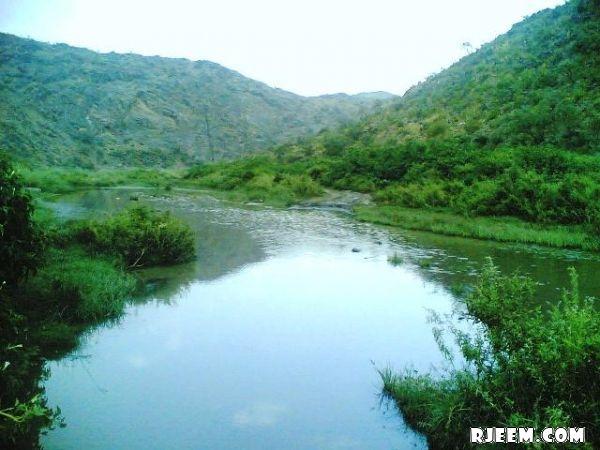 فيديو و صور للطبيعة في الباحة 13396323012.jpg