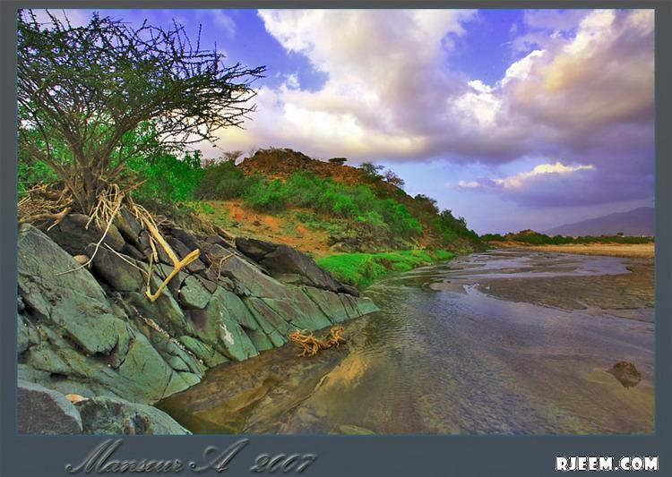 فيديو و صور للطبيعة في الباحة 13396323013.jpg