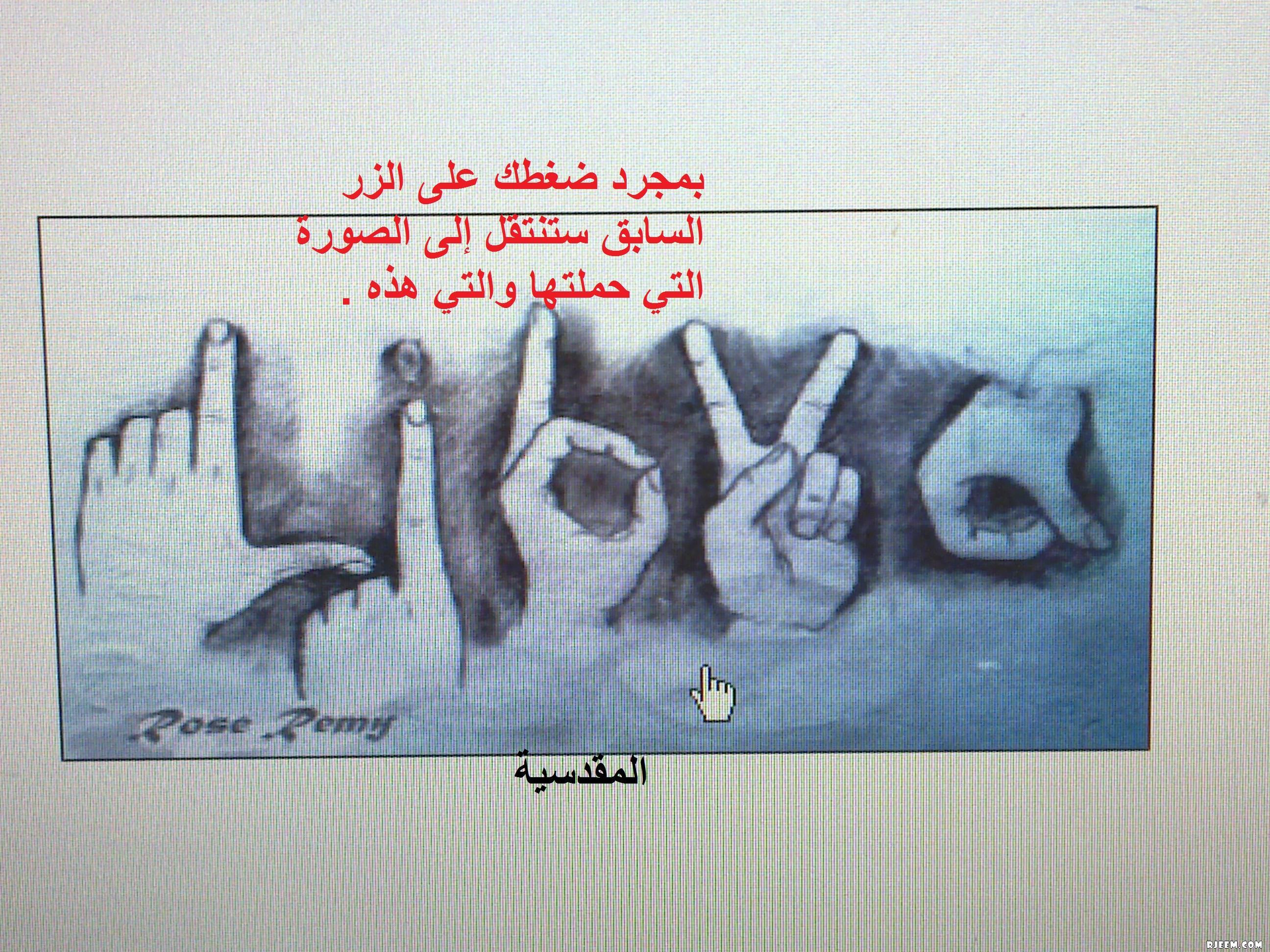 المقدسية 13399366521.jpg