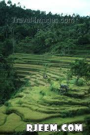 اندونيسيا الساحرة الرائعة 13399616852.jpg