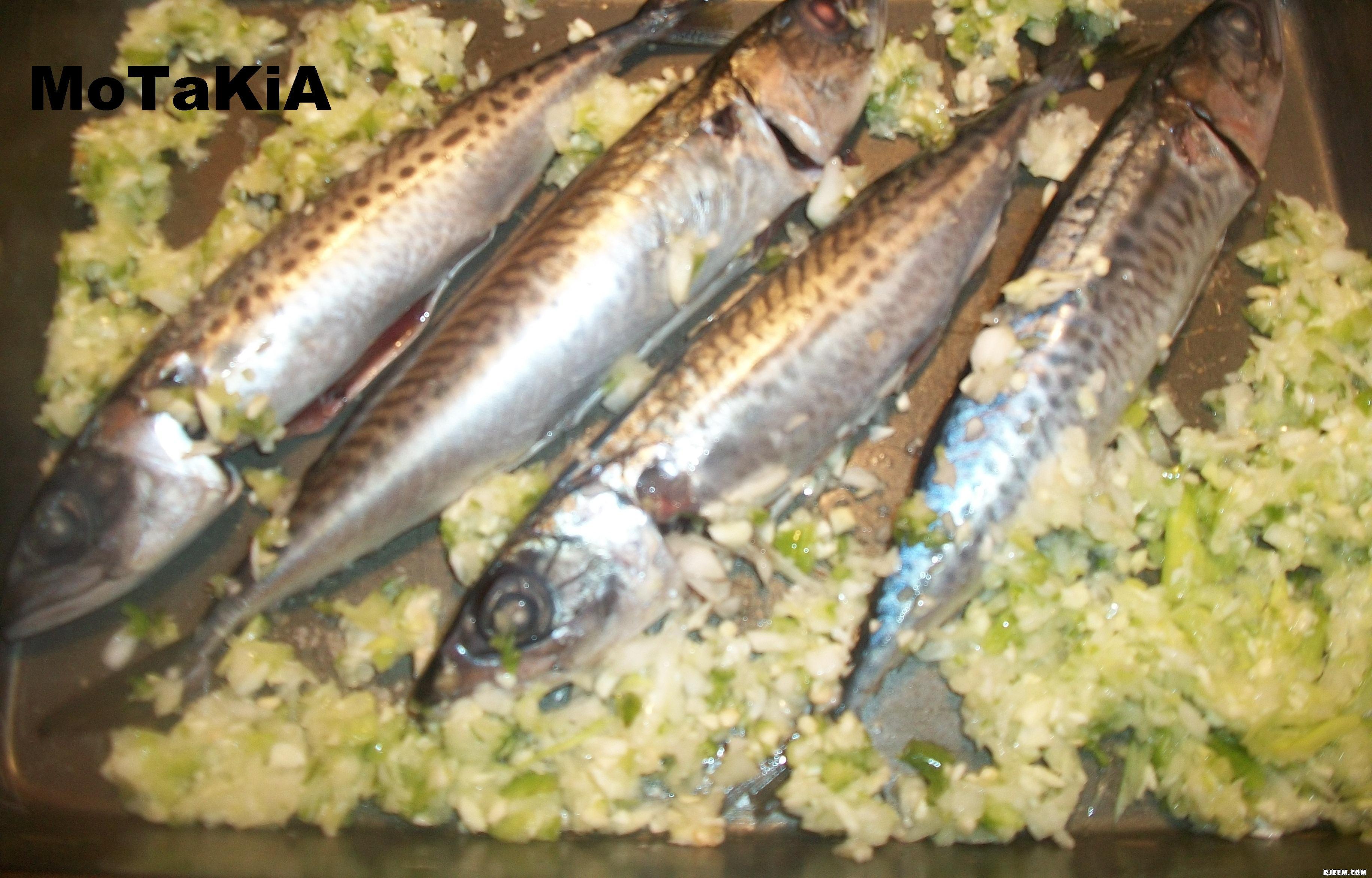 سمك الماكرو في الفرن على طريقتي 13425999544.jpg