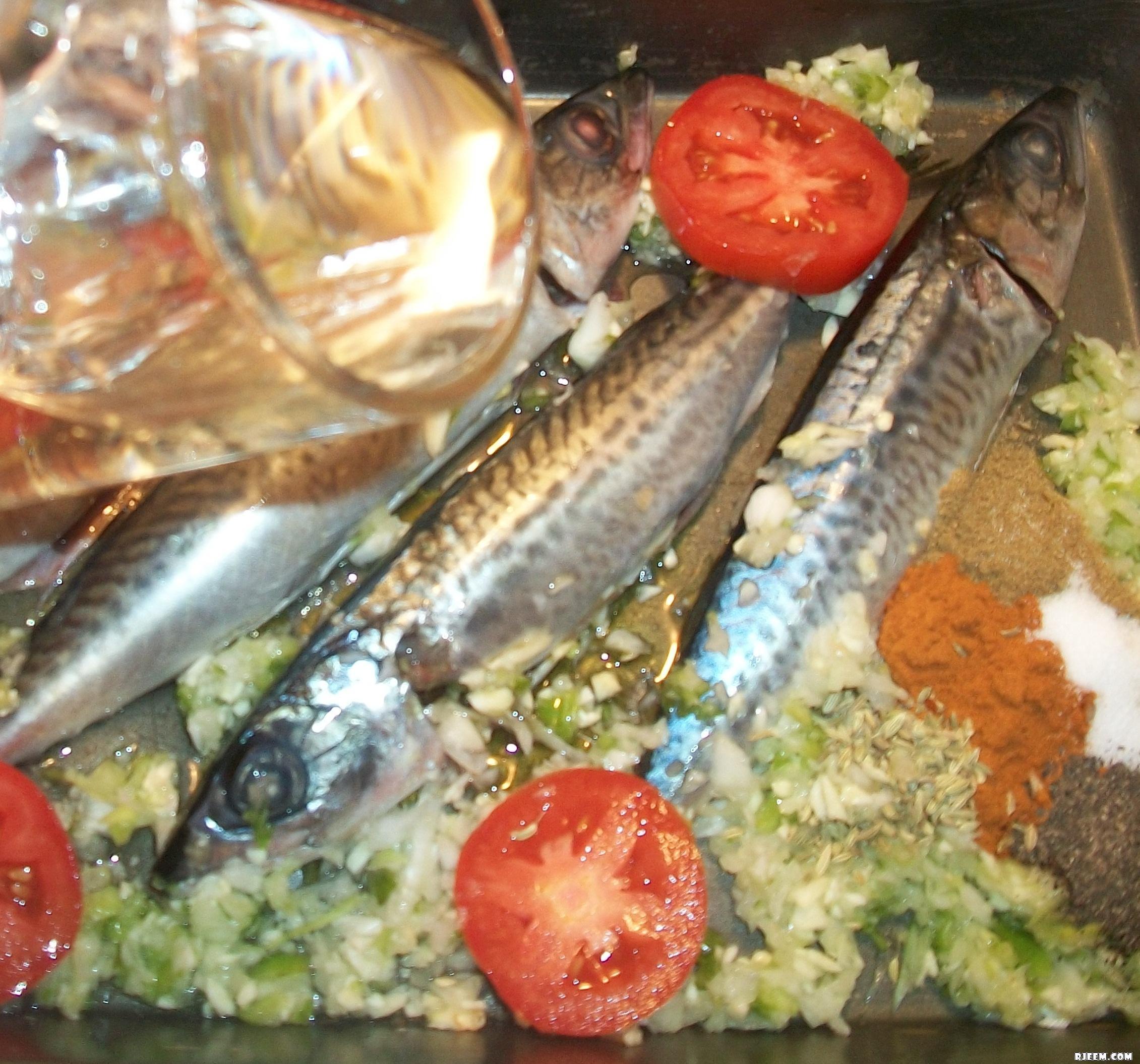 سمك الماكرو في الفرن على طريقتي 13426001612.jpg