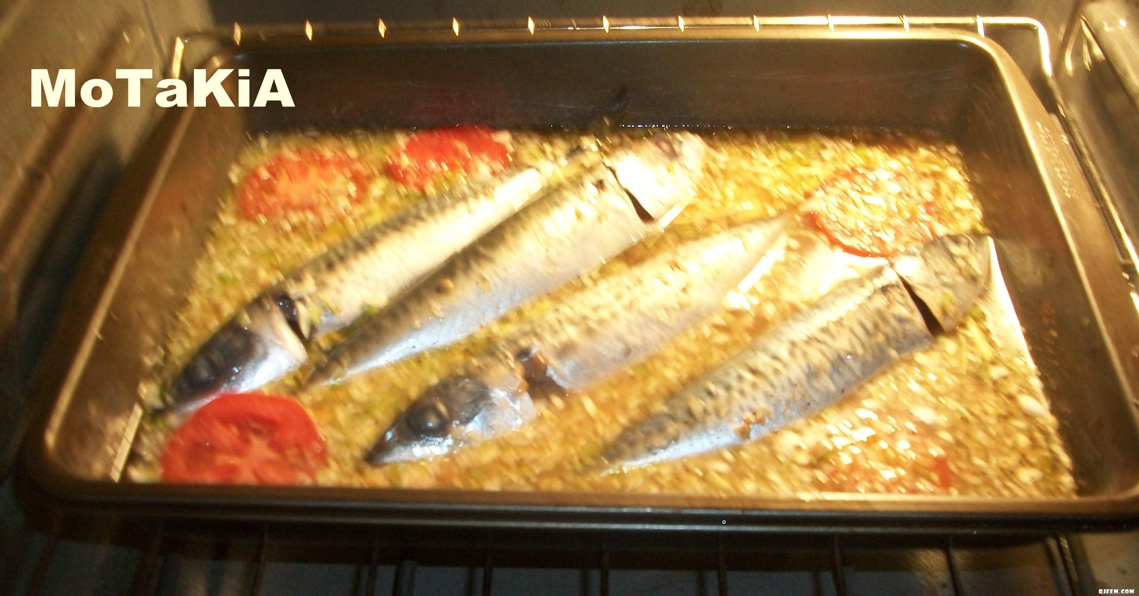 سمك الماكرو في الفرن على طريقتي 13426001635.jpg