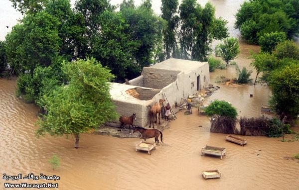 الفيضانات 13482486074.jpg
