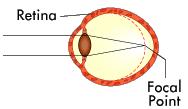 العين....سؤال الطبيعيه والبيئيه 13483466572.png