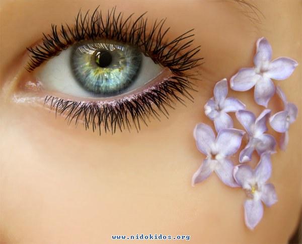 العين....سؤال الطبيعيه والبيئيه 13483480752.jpg