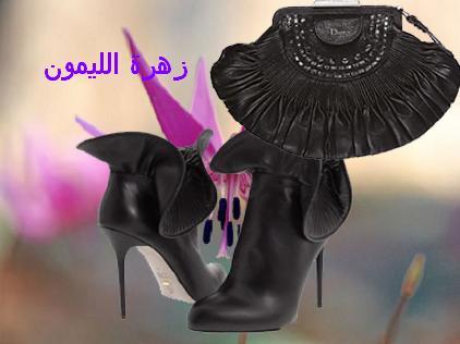 أجمل كليكشن احذية وشنط 2013 13559215785.jpg
