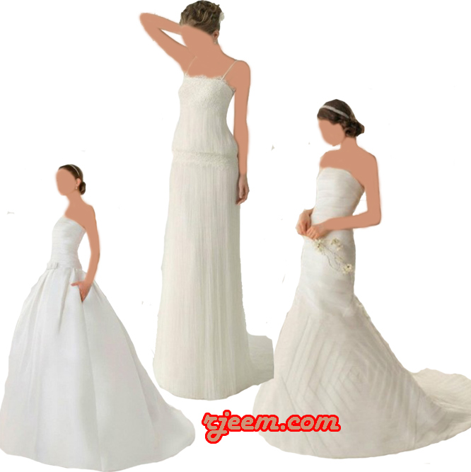 2013 2013 Wedding Dresses 13559510013.jpg