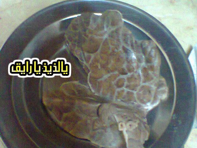 الفشه او الفشش بطريقه لذيذه من مطبخى 13589636052.jpg