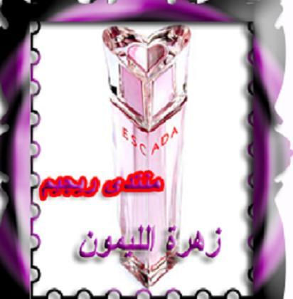 ايطارات 13609256803.jpg