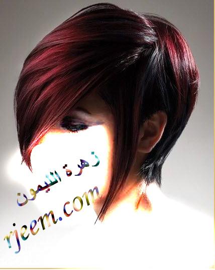 (فراشة 13643201781.jpg