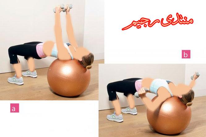 التمارين الرياضية 13664926965.jpg