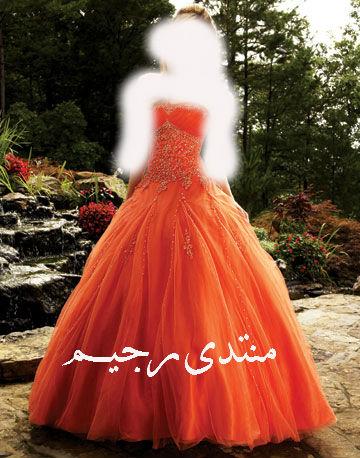 برتقالي 2013 13681265441.jpg