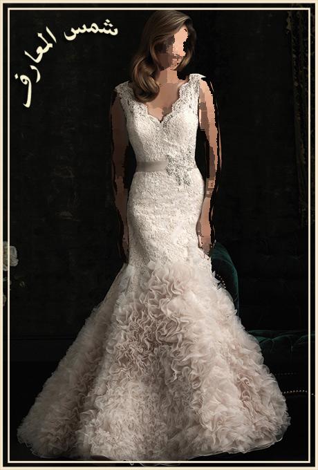 احتياجات العصرية Allure Bridals 2013 13690924614.jpg