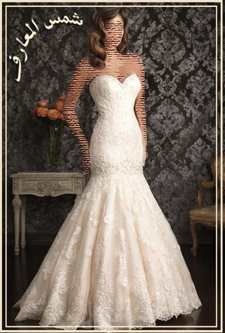 احتياجات العصرية Allure Bridals 2013 13690927184.jpg