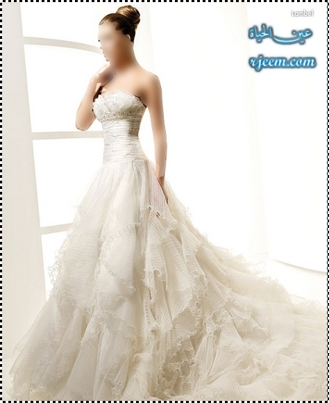 فساتين زفاف مميزة للعروس المميزة فساتين زفاف روعه صور فساتين زفاف جديدة بموديلات راقيه 13752646834.jpg