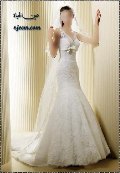 فساتين للزفاف ناعمة بموديلات فرنسيه بدلات عروس جميله ناعمة حصرى لرجيم 13765699622.jpg