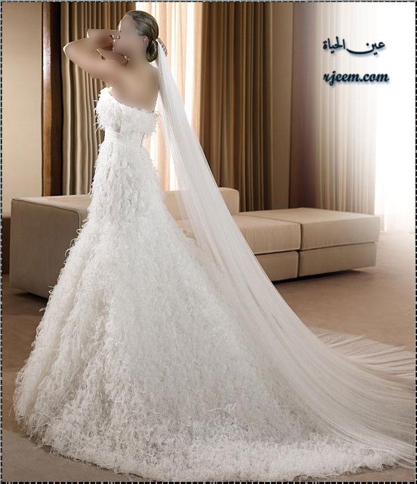 فساتين للزفاف ناعمة بموديلات فرنسيه بدلات عروس جميله ناعمة حصرى لرجيم 13765699623.jpg