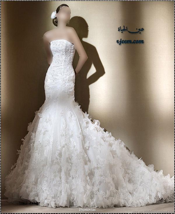 فساتين للزفاف ناعمة بموديلات فرنسيه بدلات عروس جميله ناعمة حصرى لرجيم 13765699624.jpg