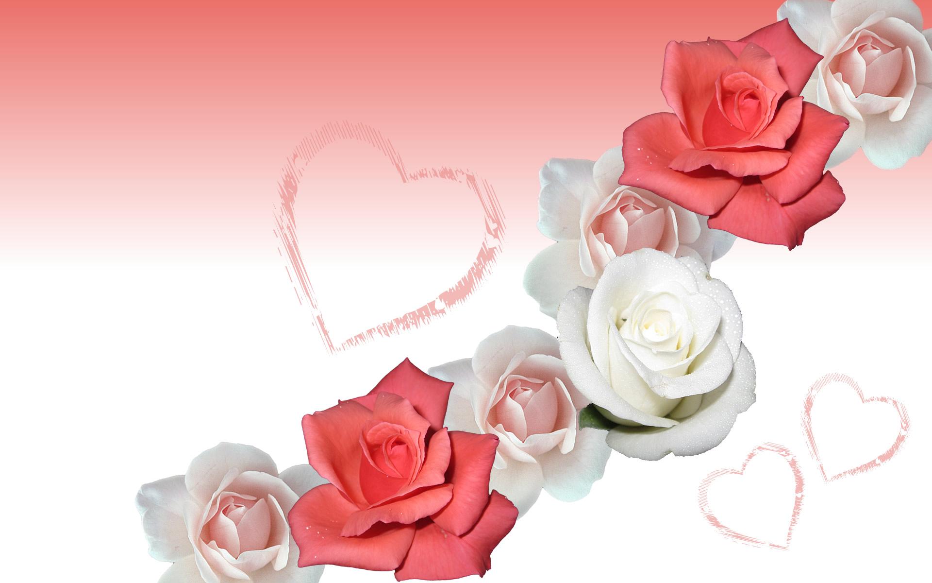 رومانسيه رومانسيه 13784587202.jpg
