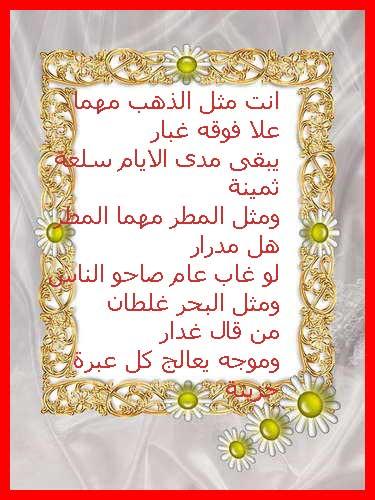 الصداقة 2014 13862905103.jpg