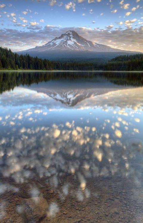 الطبيعية وأغربــــــــــــــــــها 13872009742.jpg