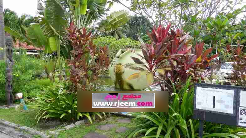 Frangipani resort & 13893789481.png
