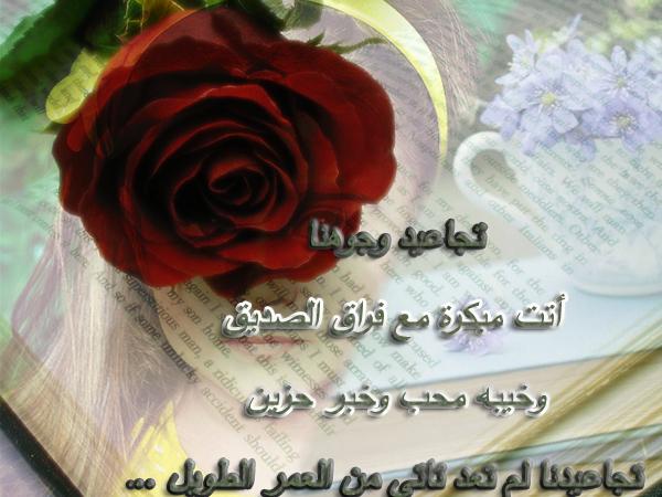 لمنتدانا 13927064751.jpg