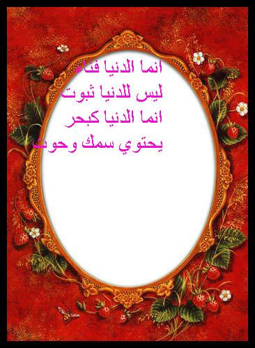 13957108962.jpg