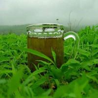 اعشاب طبية لإستخدامات عديدة 13967958742.jpg