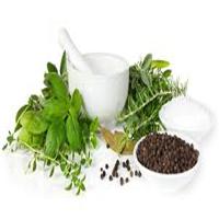اعشاب طبية لإستخدامات عديدة 13967958745.jpg