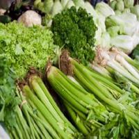 اعشاب طبية لإستخدامات عديدة 13967967211.jpg