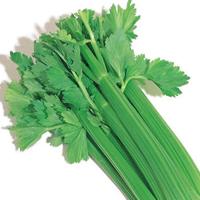 اعشاب طبية لإستخدامات عديدة 13967967212.jpg