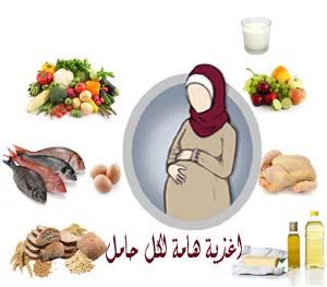 التغذية 13980114485.jpg