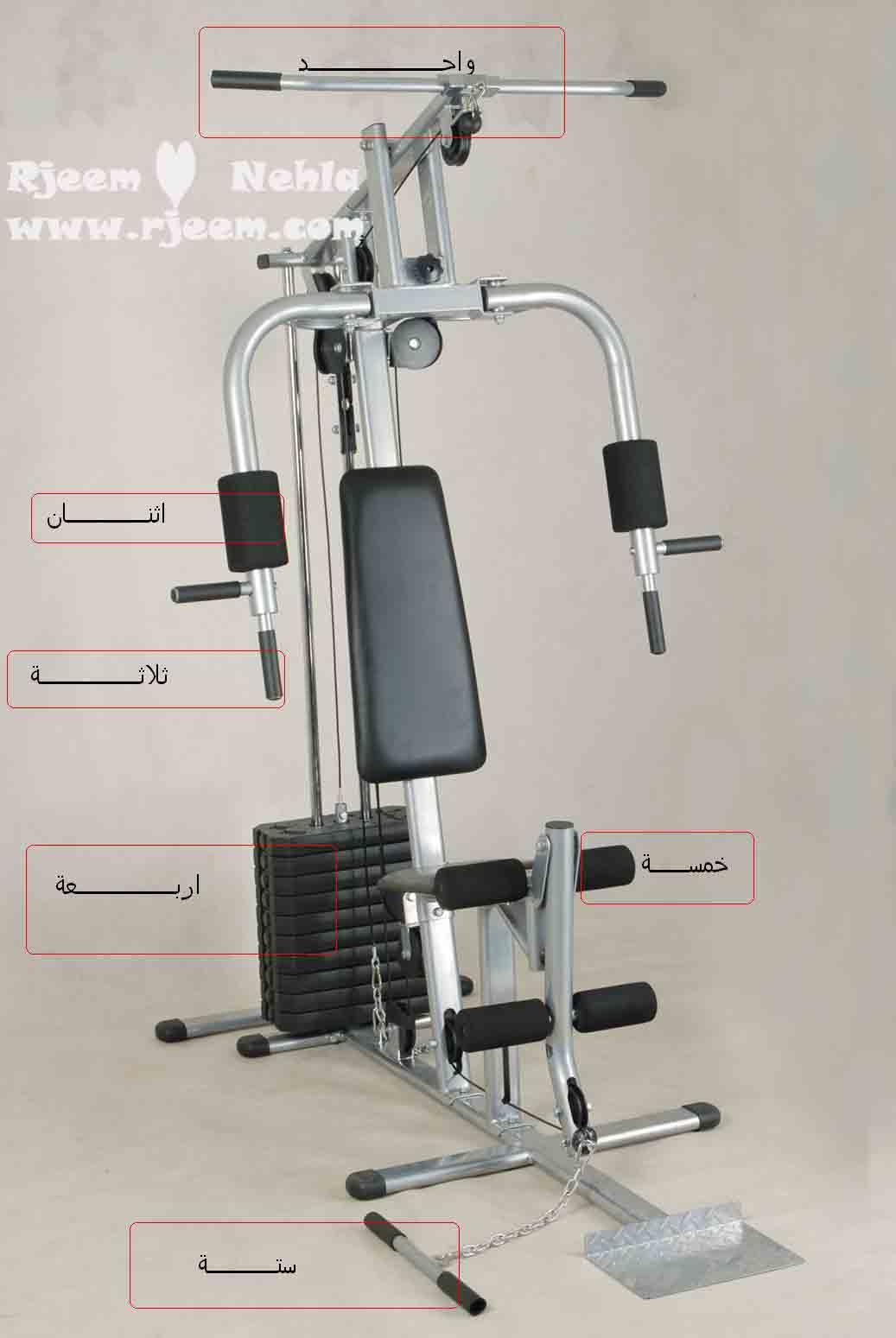 تقوية العضلات شدها multi 14104622781.jpg