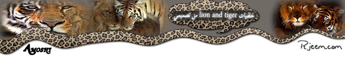 lion & tiger 14130332301.jpg