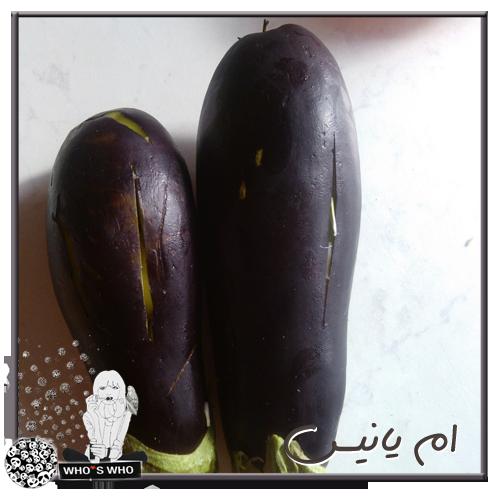 puree بوري البتنجان الفرن وصحي 14195963491.png