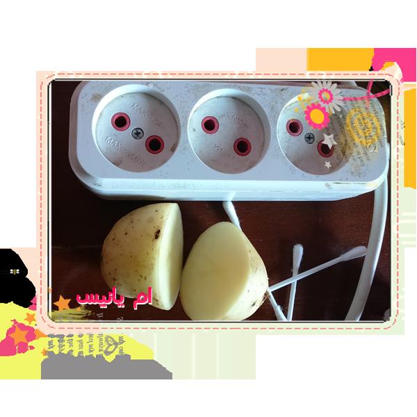 البطاطا الكهرباء 14287044391.png