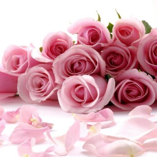 رومانسية 15413317781.jpeg